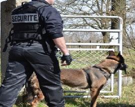Agent de sécurité à Commercy (55)